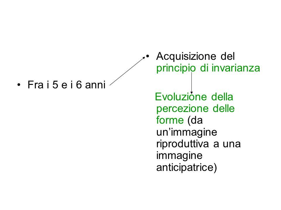 Fra i 5 e i 6 anni Acquisizione del principio di invarianza Evoluzione della percezione delle forme (da unimmagine riproduttiva a una immagine anticip