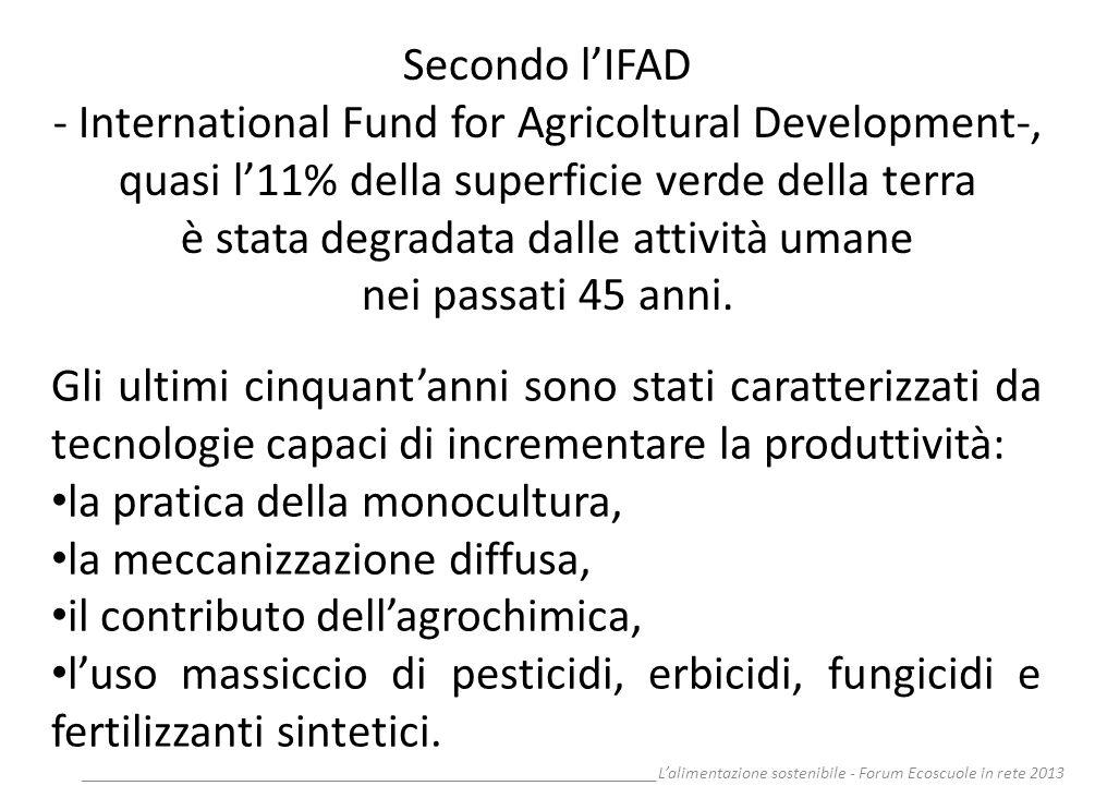 __________________________________________________________________Lalimentazione sostenibile - Forum Ecoscuole in rete 2013 Secondo lIFAD - Internatio