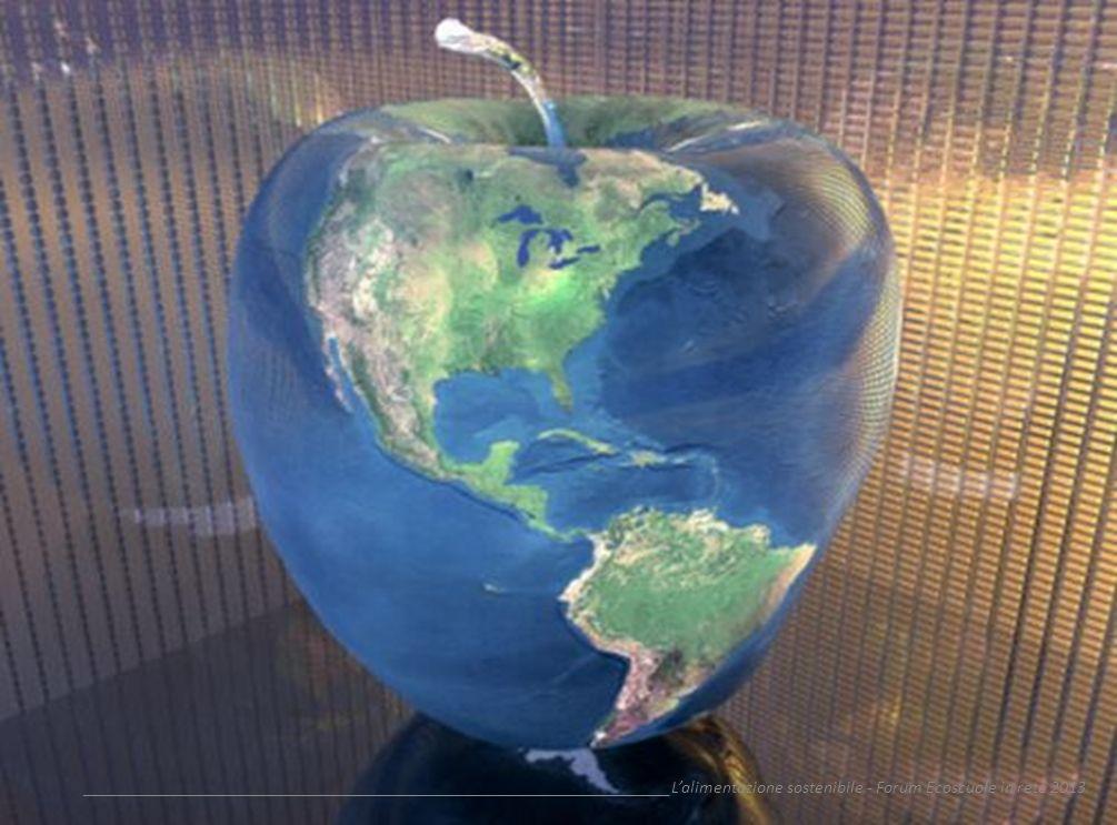 __________________________________________________________________Lalimentazione sostenibile - Forum Ecoscuole in rete 2013 Vantaggi 1.ambientale: la riduzione della CO 2 prodotta grazie allabbattimento dei trasporti (prevalentemente su gomma), il risparmio in acqua ed energia dei processi di lavaggio e confezionamento e leliminazione degli imballaggi di plastica e cartone rendono questi prodotti realmente ecosostenibili; 2.nutrizionale: sono prodotti di stagione e del territorio e stante il breve trasporto e stoccaggio mantengono intatte tutte le caratteristiche organolettiche e i principi nutritivi (vitamine, minerali, ecc…);