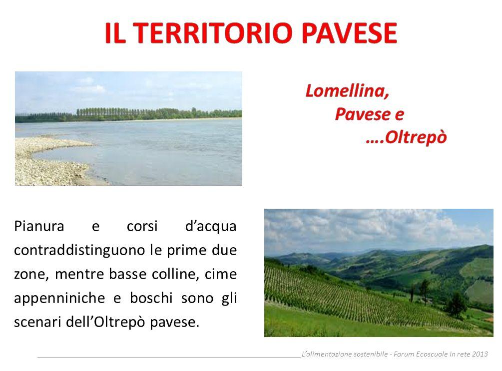 __________________________________________________________________Lalimentazione sostenibile - Forum Ecoscuole in rete 2013 Pianura e corsi dacqua con