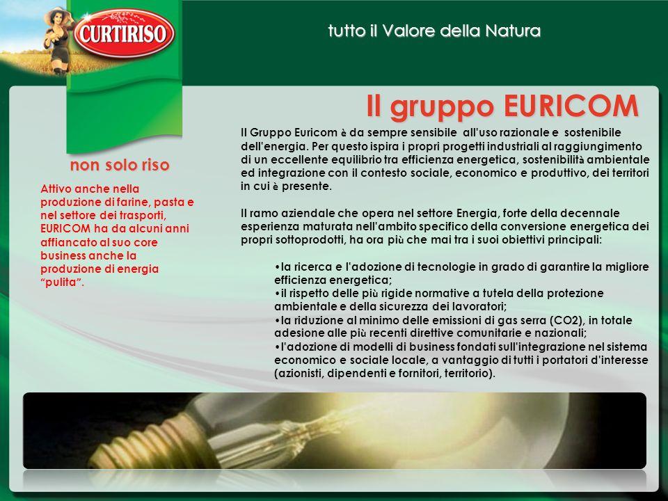 tutto il Valore della Natura Il gruppo EURICOM non solo riso Il Gruppo Euricom è da sempre sensibile all'uso razionale e sostenibile dell'energia. Per