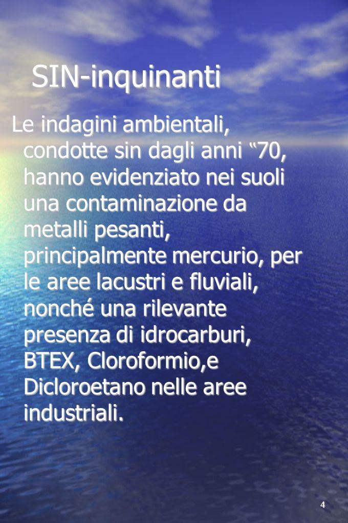 5 SIN- inquinanti Nei sedimenti delle acque lacuali sono stati riscontrati i seguenti inquinanti: metalli pesanti, solventi organici aromatici (stirene e cumene), idrocarburi leggeri e pesanti, IPA e PCB.