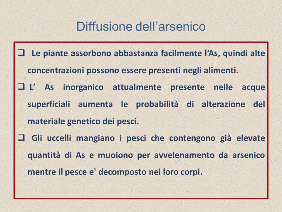 Diffusione dellarsenico Le piante assorbono abbastanza facilmente lAs, quindi alte concentrazioni possono essere presenti negli alimenti. L As inorgan