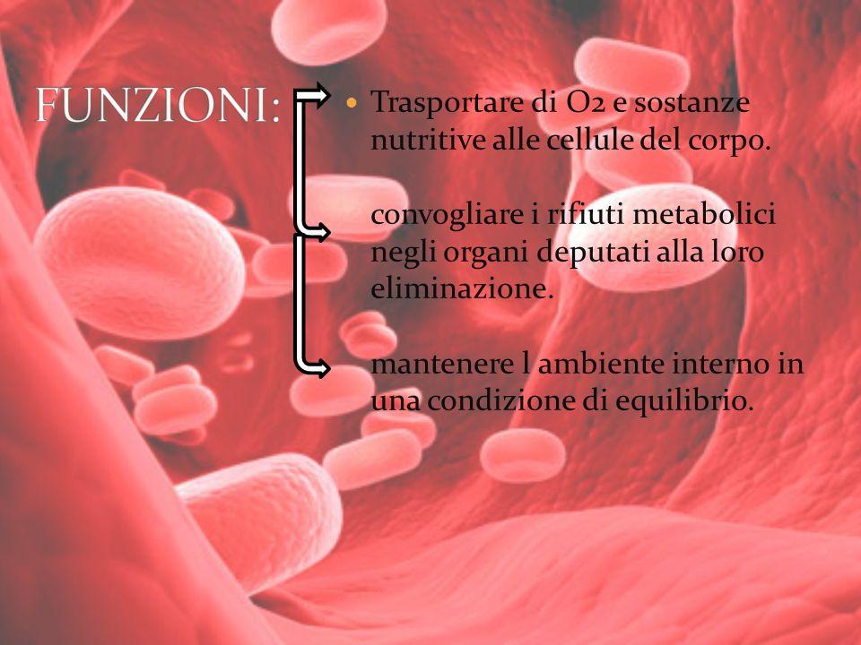 Trasportare di O2 e sostanze nutritive alle cellule del corpo. convogliare i rifiuti metabolici negli organi deputati alla loro eliminazione. mantener