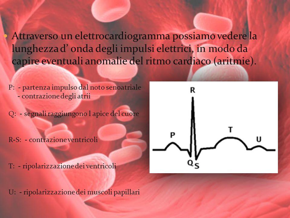 Attraverso un elettrocardiogramma possiamo vedere la lunghezza d onda degli impulsi elettrici, in modo da capire eventuali anomalie del ritmo cardiaco