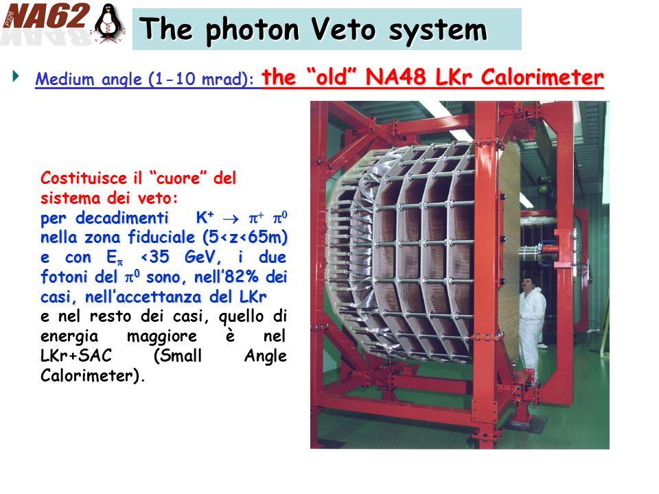 The photon Veto system the old NA48 LKr Calorimeter Medium angle (1-10 mrad): the old NA48 LKr Calorimeter Costituisce il cuore del sistema dei veto: per decadimenti K + nella zona fiduciale (5<z<65m) e con E <35 GeV, i due fotoni del 0 sono, nell82% dei casi, nellaccettanza del LKr e nel resto dei casi, quello di energia maggiore è nel LKr+SAC (Small Angle Calorimeter).
