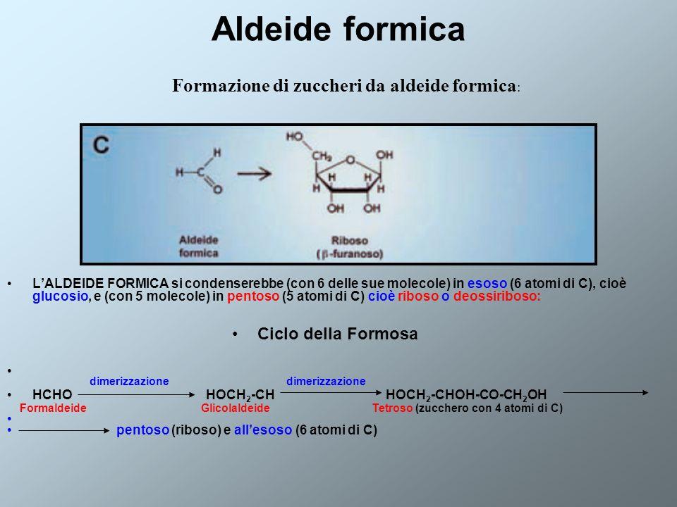 Aldeide formica LALDEIDE FORMICA si condenserebbe (con 6 delle sue molecole) in esoso (6 atomi di C), cioè glucosio, e (con 5 molecole) in pentoso (5