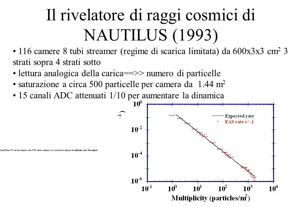 Il rivelatore di raggi cosmici di NAUTILUS (1993) 116 camere 8 tubi streamer (regime di scarica limitata) da 600x3x3 cm 2 3 strati sopra 4 strati sotto lettura analogica della carica==>> numero di particelle saturazione a circa 500 particelle per camera da 1.44 m 2 15 canali ADC attenuati 1/10 per aumentare la dinamica