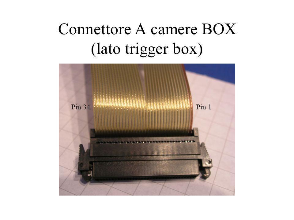 Connettore A camere BOX (lato trigger box) Pin 1Pin 34