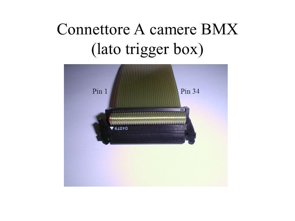 Connettore A camere BMX (lato trigger box) Pin 1Pin 34