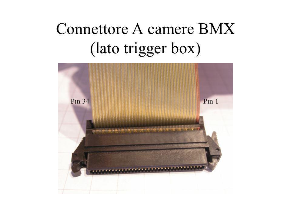 Connettori B, C e D (lato camera) Pin 1Pin 8 Pin 9Pin 16 Pin 17 Pin 32 Pin 33-34 Conn B Conn C Conn D