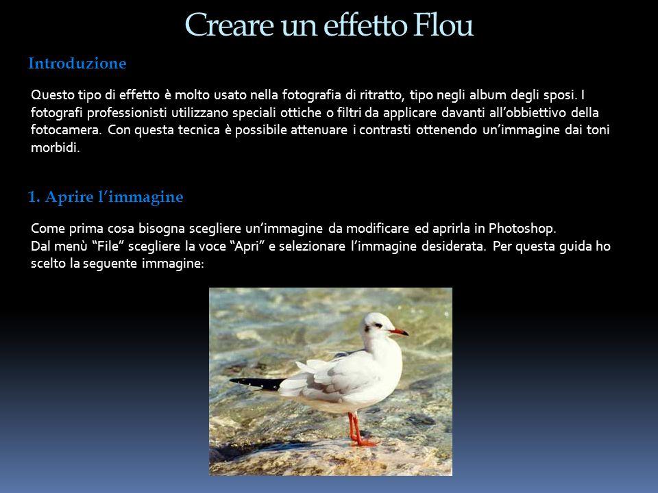Creare un effetto Flou Introduzione Questo tipo di effetto è molto usato nella fotografia di ritratto, tipo negli album degli sposi. I fotografi profe