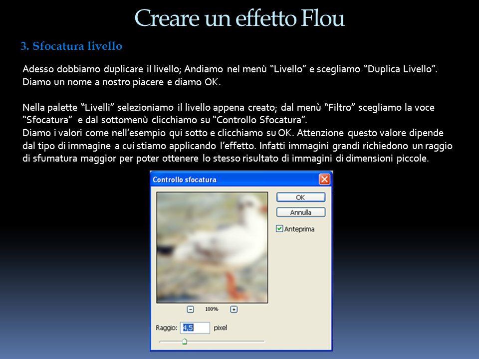 Creare un effetto Flou 4.