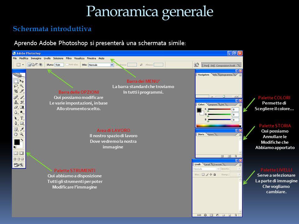 Panoramica generale Aprendo Adobe Photoshop si presenterà una schermata simile: Schermata introduttiva Area di LAVORO Il nostro spazio di lavoro Dove