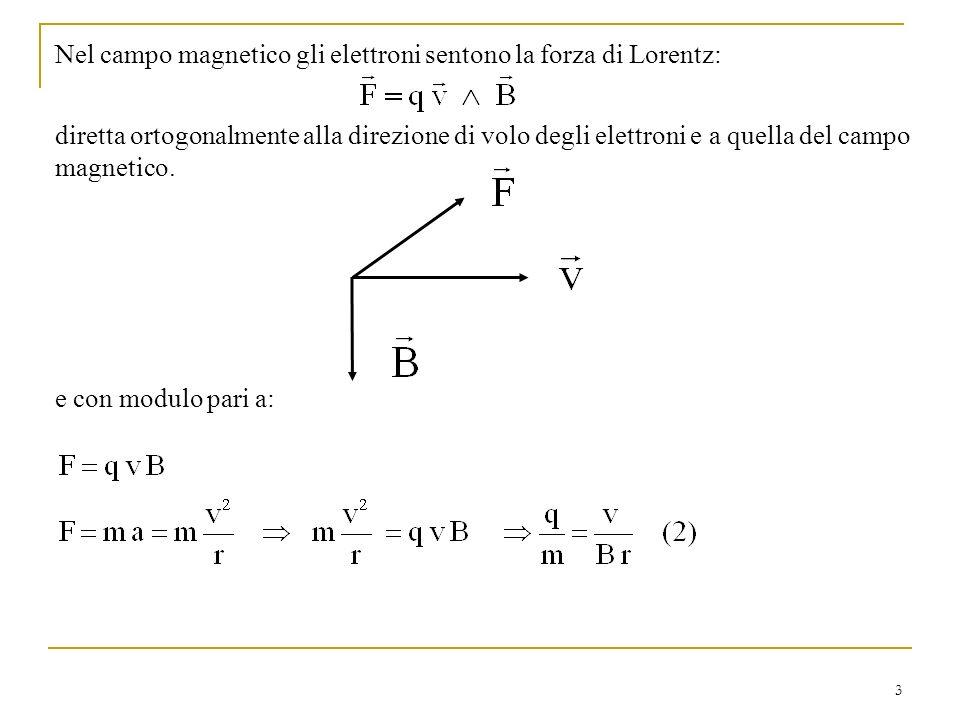 3 Nel campo magnetico gli elettroni sentono la forza di Lorentz: diretta ortogonalmente alla direzione di volo degli elettroni e a quella del campo ma
