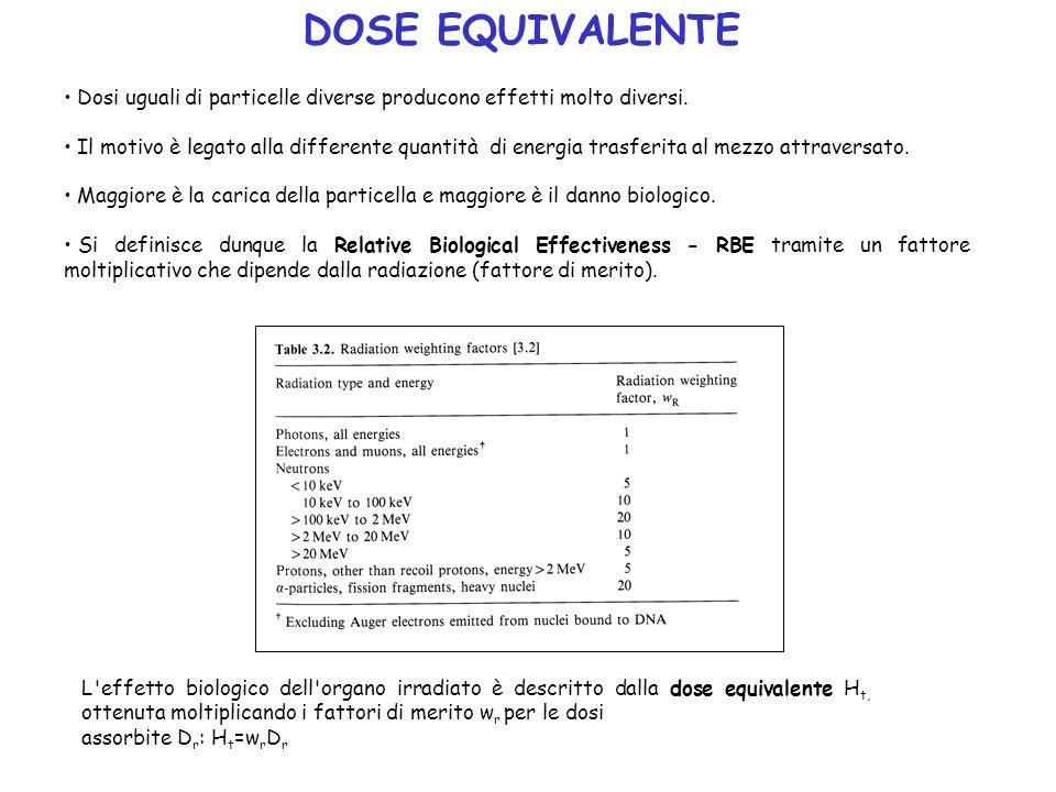 Dosi uguali di particelle diverse producono effetti molto diversi. Il motivo è legato alla differente quantità di energia trasferita al mezzo attraver