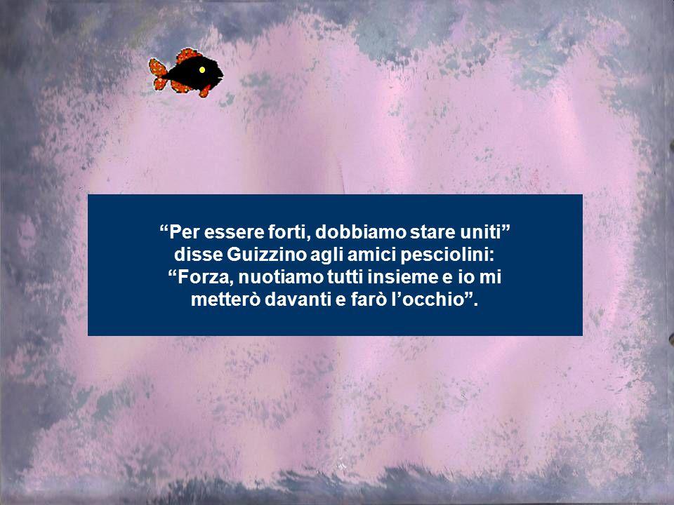 Per essere forti, dobbiamo stare uniti disse Guizzino agli amici pesciolini: Forza, nuotiamo tutti insieme e io mi metterò davanti e farò locchio.