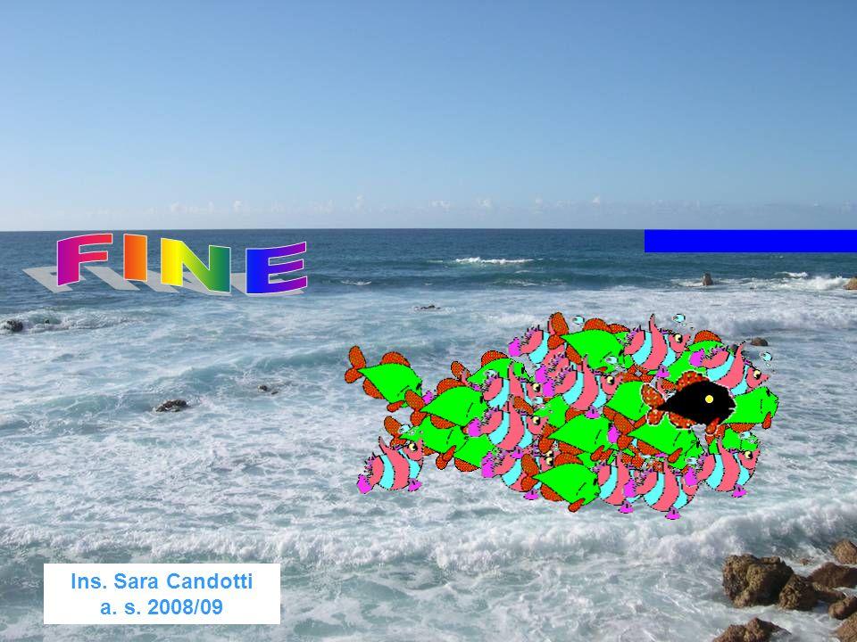 Ins. Sara Candotti a. s. 2008/09