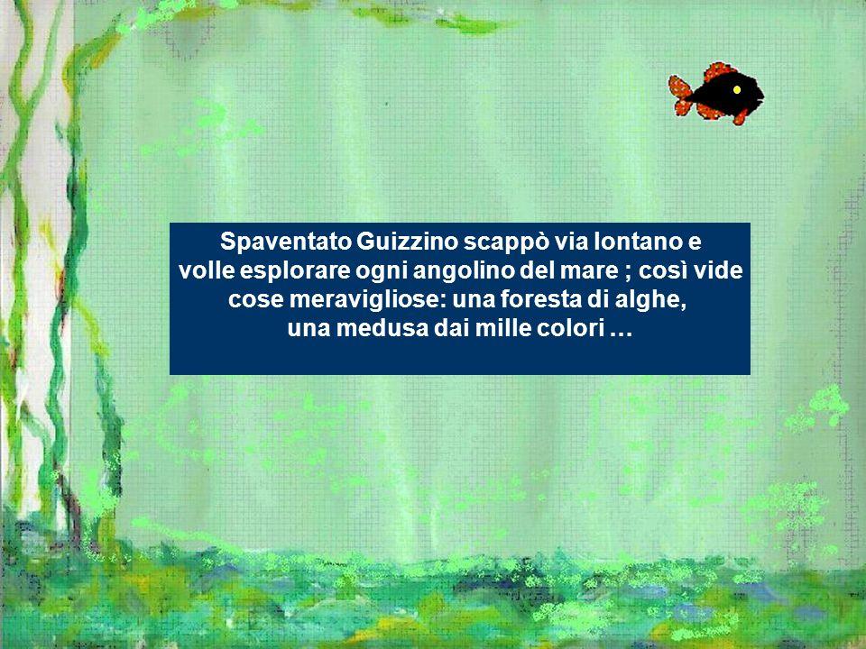 Spaventato Guizzino scappò via lontano e volle esplorare ogni angolino del mare ; così vide cose meravigliose: una foresta di alghe, una medusa dai mi