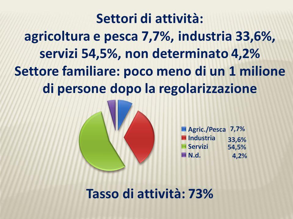 Settori di attività: agricoltura e pesca 7,7%, industria 33,6%, servizi 54,5%, non determinato 4,2% Settore familiare: poco meno di un 1 milione di persone dopo la regolarizzazione Tasso di attività: 73%
