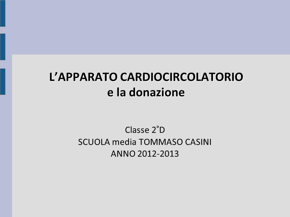 LAPPARATO CARDIOCIRCOLATORIO e la donazione Classe 2°D SCUOLA media TOMMASO CASINI ANNO 2012-2013 L