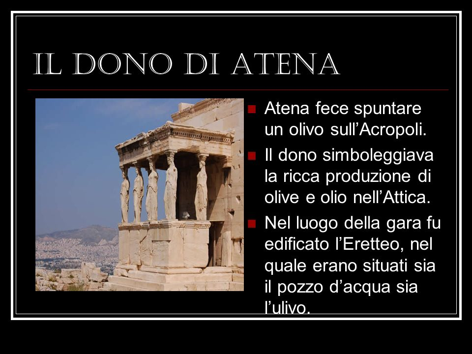 IL DONO DI ATENA Atena fece spuntare un olivo sullAcropoli.