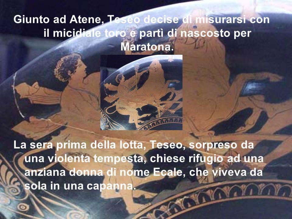 Giunto ad Atene, Teseo decise di misurarsi con il micidiale toro e partì di nascosto per Maratona. La sera prima della lotta, Teseo, sorpreso da una v
