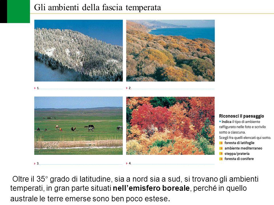 Gli ambienti della fascia temperata Oltre il 35° grado di latitudine, sia a nord sia a sud, si trovano gli ambienti temperati, in gran parte situati n