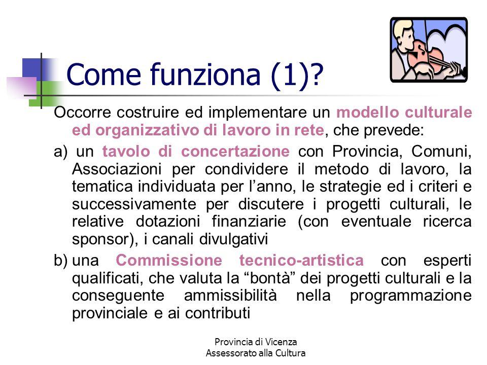 Provincia di Vicenza Assessorato alla Cultura Come funziona (1)? Occorre costruire ed implementare un modello culturale ed organizzativo di lavoro in