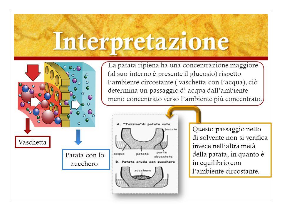 Classe 2^ sezione C