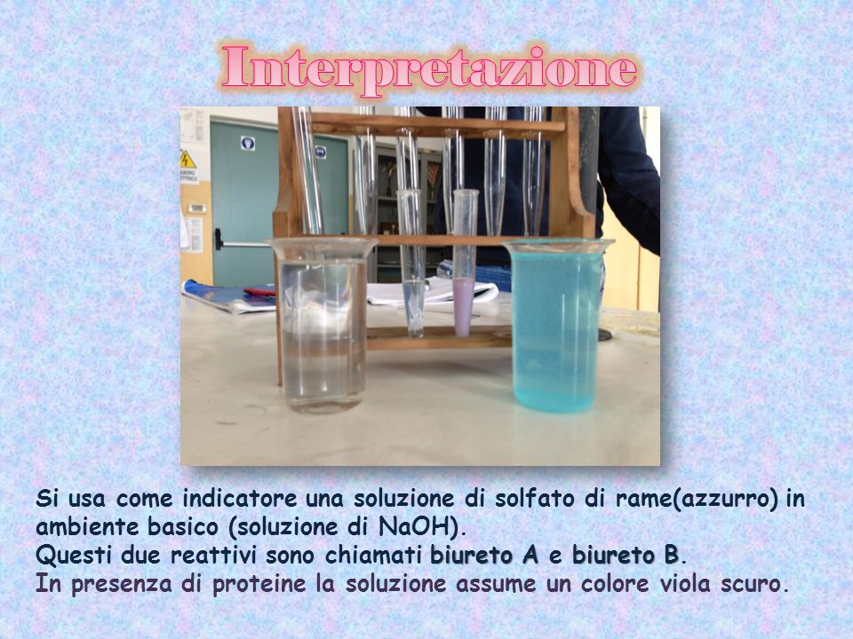 Si usa come indicatore una soluzione di solfato di rame(azzurro) in ambiente basico (soluzione di NaOH). biureto Abiureto B Questi due reattivi sono c