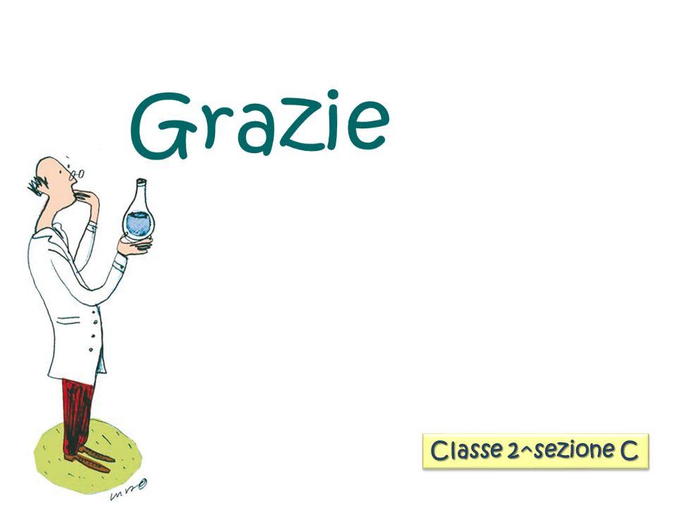 Classe 2^sezione C