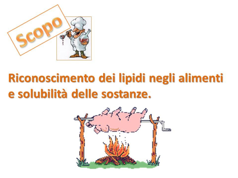 Provette Siringa Bisturi Pipette Porta provette Carta da filtro Acetone(C 3 H 6 O) Benzene (C 6 H 6 ) SudanIII (C 22 H 16 N 4O ) MORTADELLA OLIO ACQUA CIPOLLA