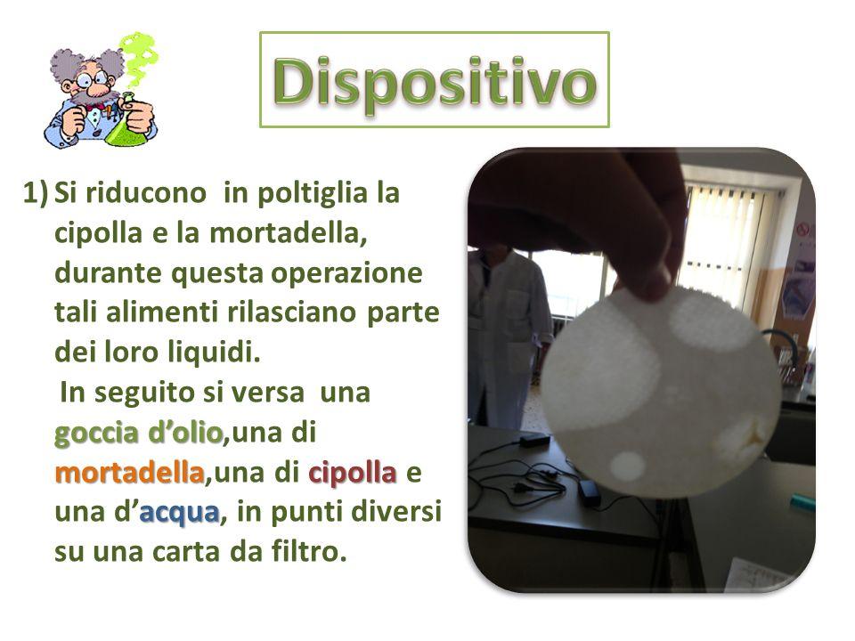 1)Si riducono in poltiglia la cipolla e la mortadella, durante questa operazione tali alimenti rilasciano parte dei loro liquidi. goccia dolio mortade
