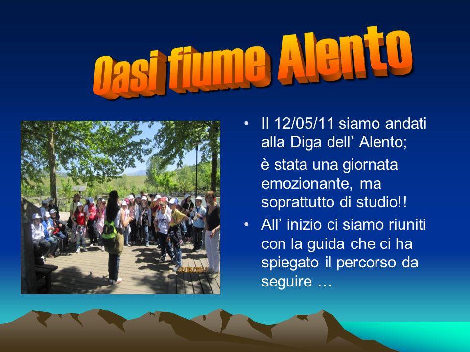 Il 12/05/11 siamo andati alla Diga dell Alento; è stata una giornata emozionante, ma soprattutto di studio!.