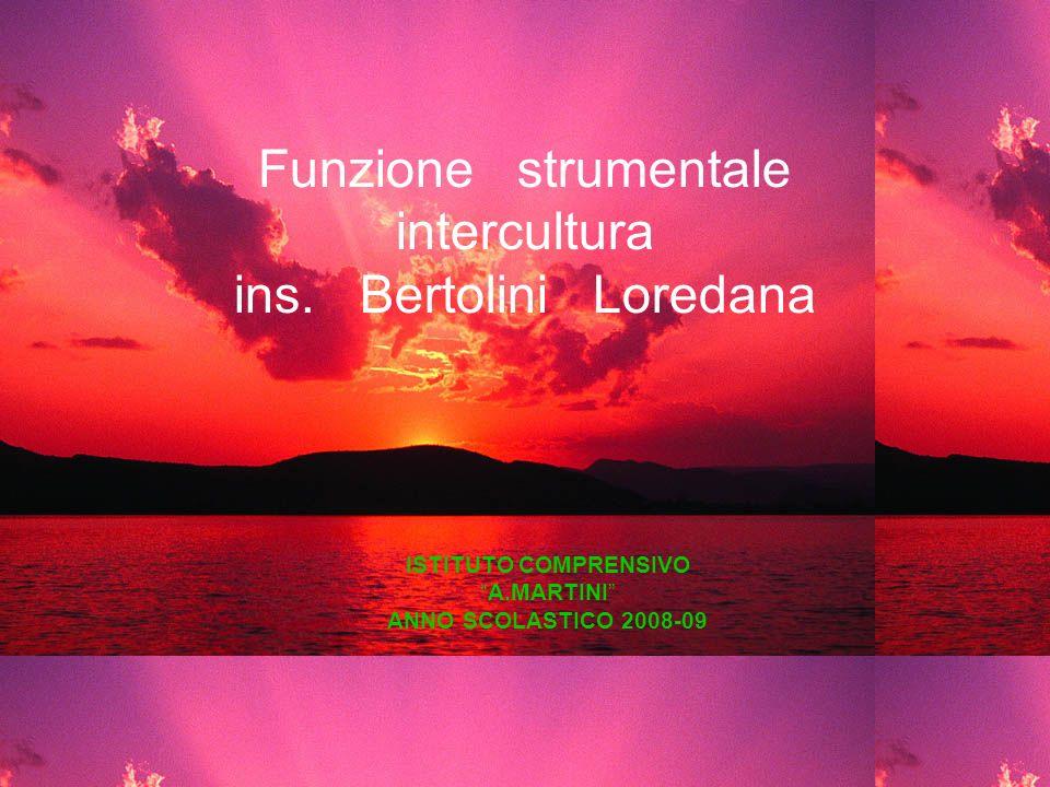 Funzione strumentale intercultura ins. Bertolini Loredana ISTITUTO COMPRENSIVO A.MARTINI ANNO SCOLASTICO 2008-09