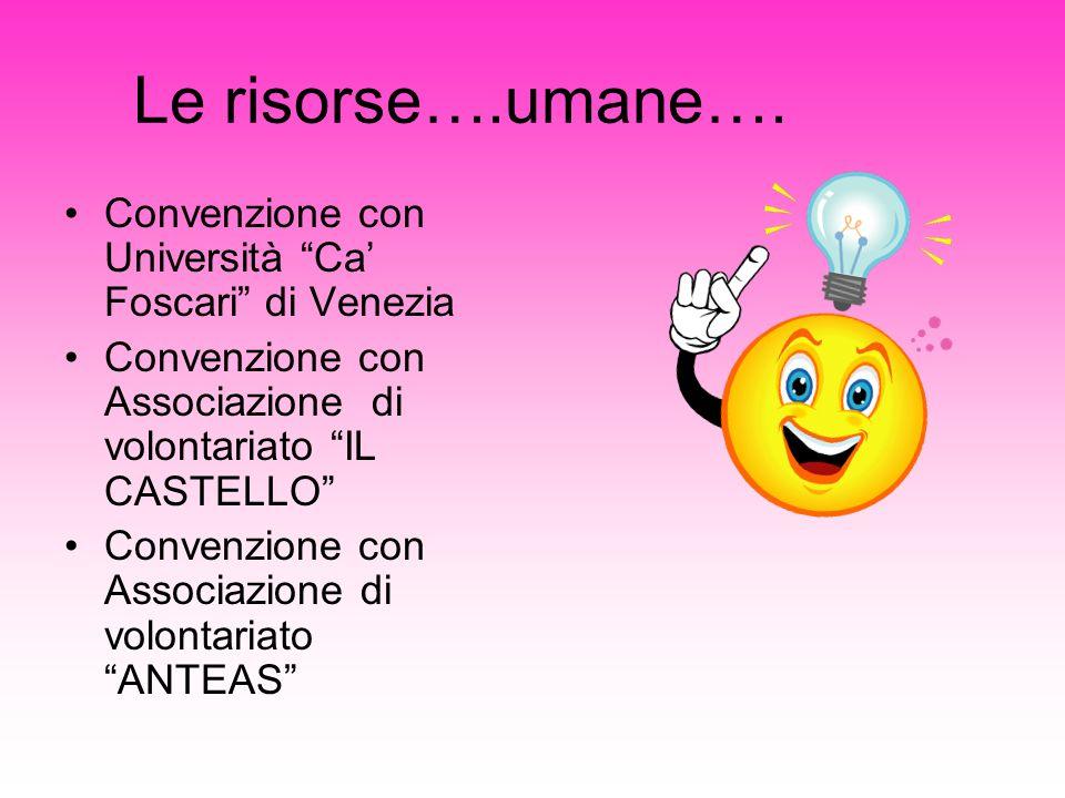 Le risorse….umane…. Convenzione con Università Ca Foscari di Venezia Convenzione con Associazione di volontariato IL CASTELLO Convenzione con Associaz