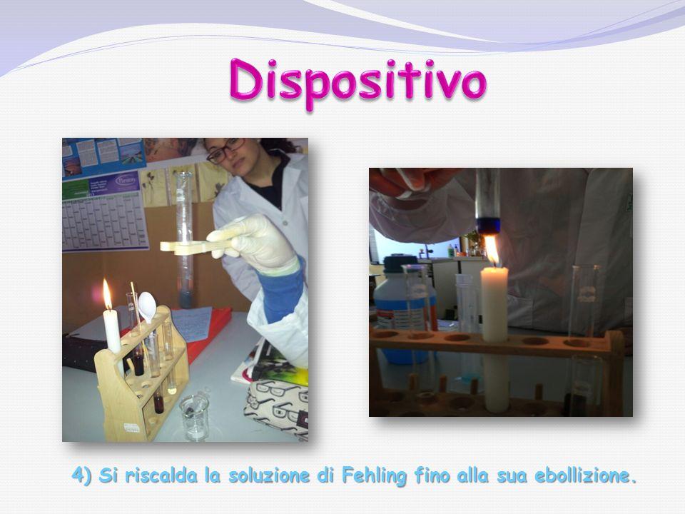 5) Scaldare le provette e aggiungere a ciascuna 3 mL di reattivo di Fehling.