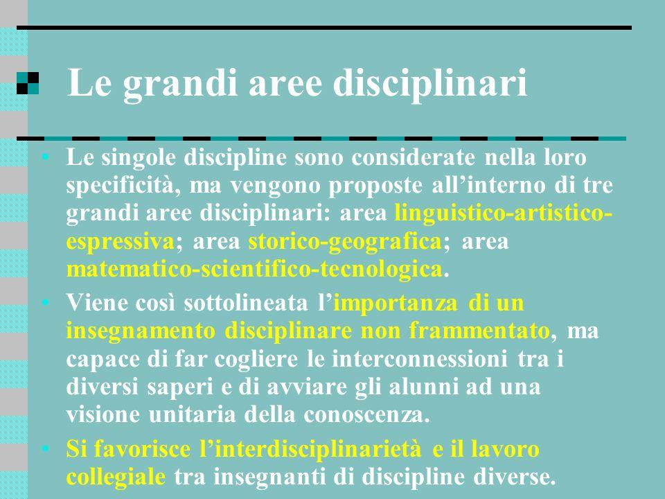 Le grandi aree disciplinari Le singole discipline sono considerate nella loro specificità, ma vengono proposte allinterno di tre grandi aree disciplin