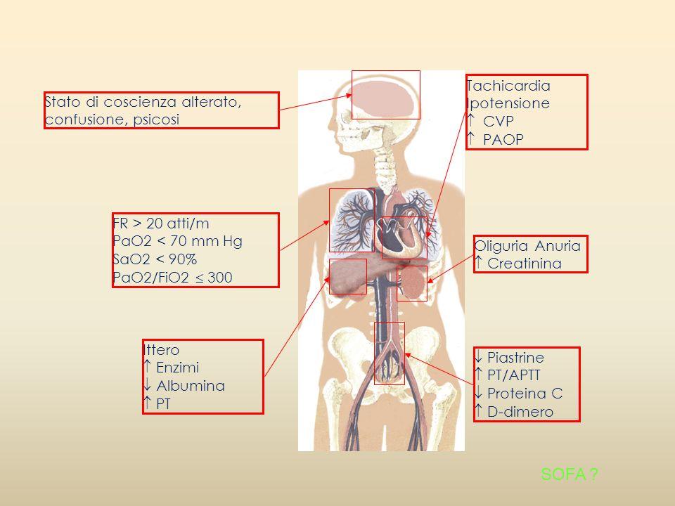 Tachicardia Ipotensione CVP PAOP Ittero Enzimi Albumina PT Stato di coscienza alterato, confusione, psicosi FR > 20 atti/m PaO2 < 70 mm Hg SaO2 < 90%