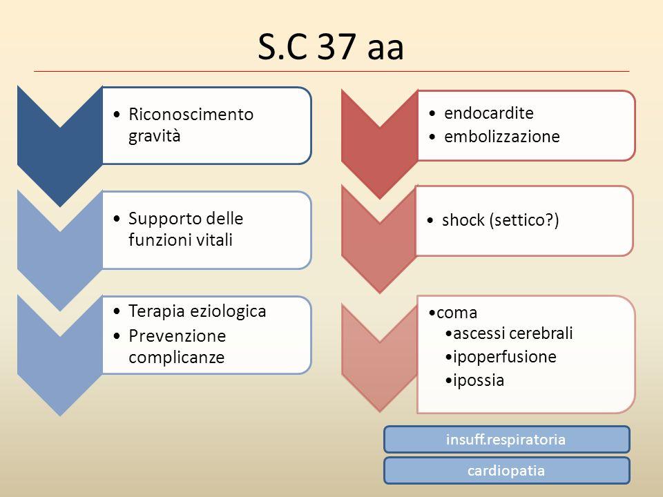 S.C 37 aa endocardite embolizzazione shock (settico?) coma ascessi cerebrali ipoperfusione ipossia Riconoscimento gravità Supporto delle funzioni vita