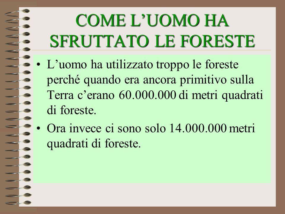 COME LUOMO HA SFRUTTATO LE FORESTE Luomo ha utilizzato troppo le foreste perché quando era ancora primitivo sulla Terra cerano 60.000.000 di metri qua