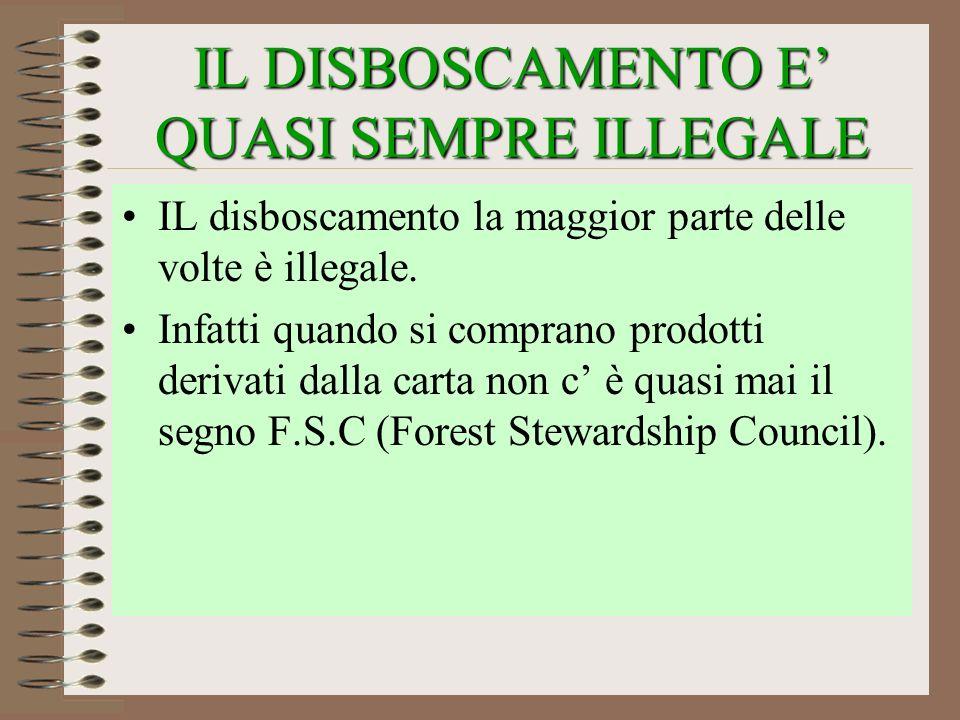 IL DISBOSCAMENTO E QUASI SEMPRE ILLEGALE IL disboscamento la maggior parte delle volte è illegale. Infatti quando si comprano prodotti derivati dalla
