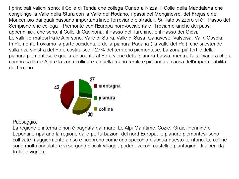 I principali valichi sono: il Colle di Tenda che collega Cuneo a Nizza, il Colle della Maddalena che congiunge la Valle della Stura con la Valle del R