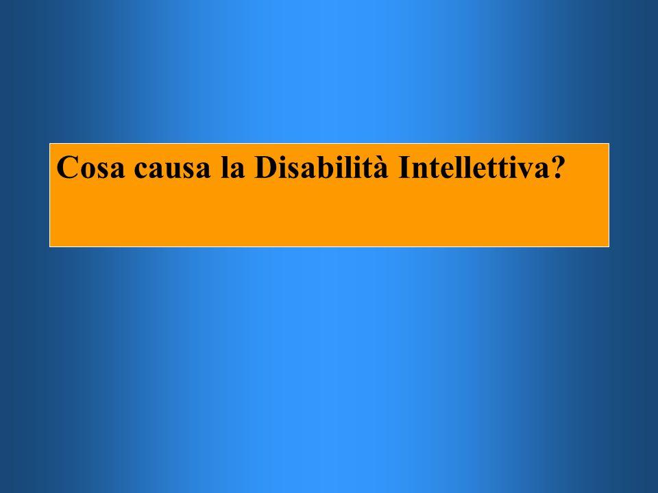 Cosa causa la Disabilità Intellettiva?