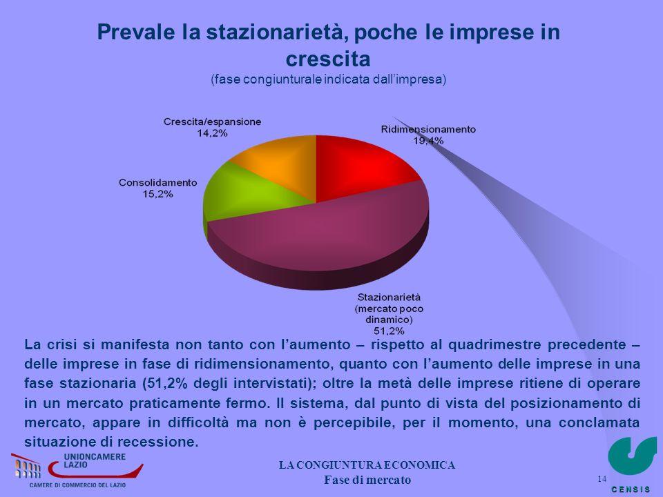 C E N S I S 14 Prevale la stazionarietà, poche le imprese in crescita (fase congiunturale indicata dallimpresa) La crisi si manifesta non tanto con la