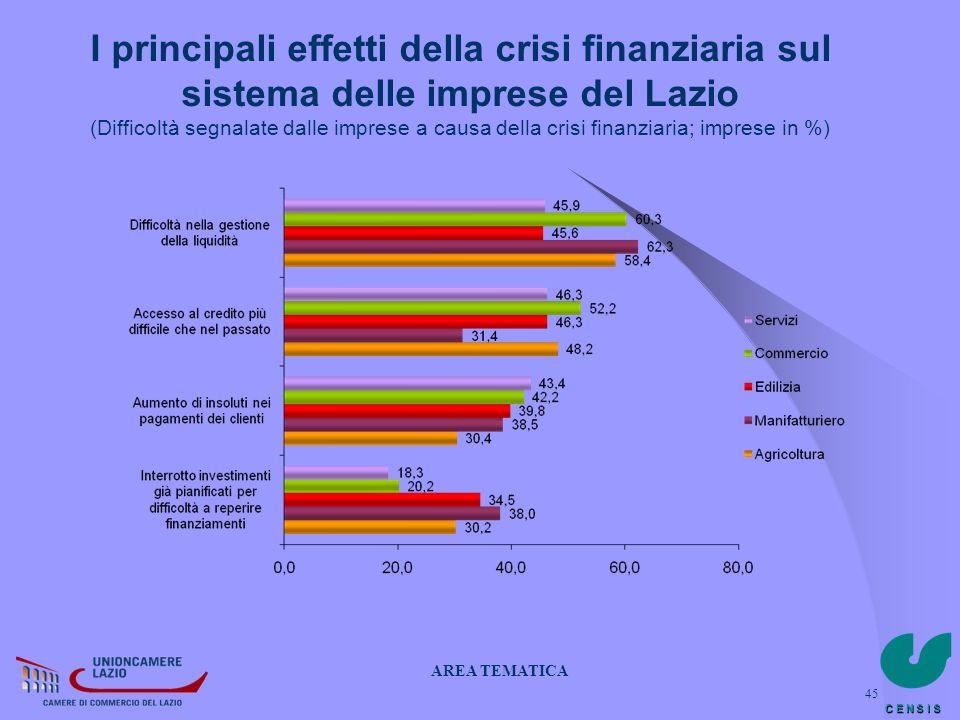 C E N S I S 45 I principali effetti della crisi finanziaria sul sistema delle imprese del Lazio (Difficoltà segnalate dalle imprese a causa della cris