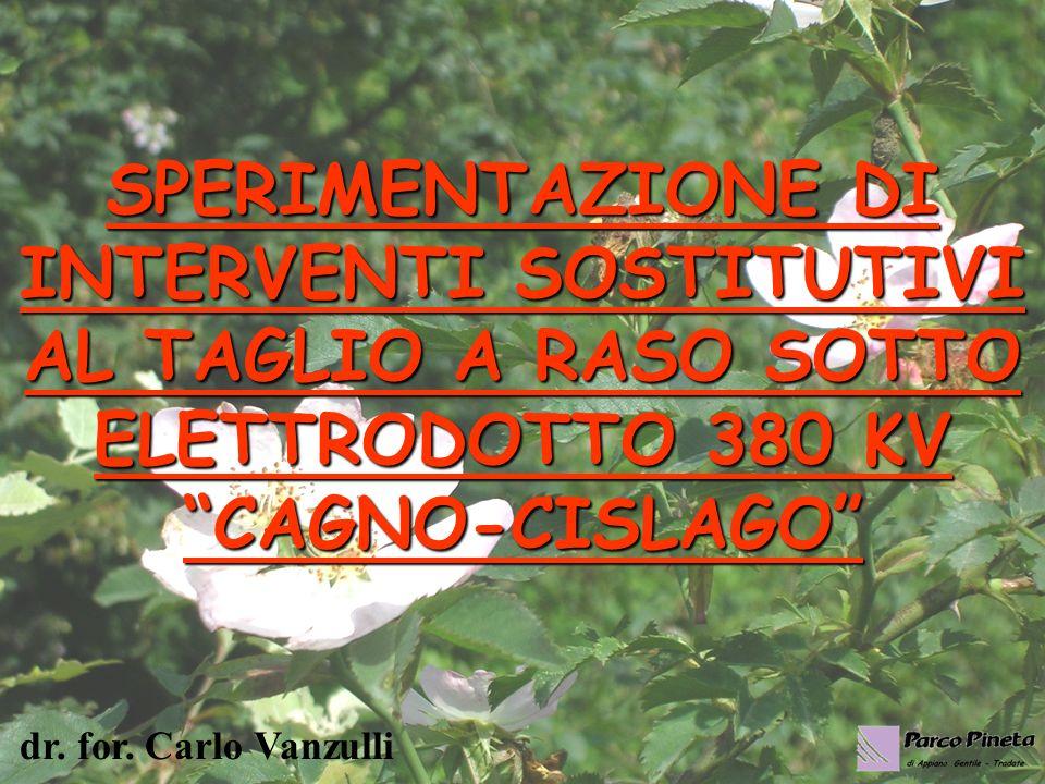 SPERIMENTAZIONE DI INTERVENTI SOSTITUTIVI AL TAGLIO A RASO SOTTO ELETTRODOTTO 380 KV CAGNO-CISLAGO dr.