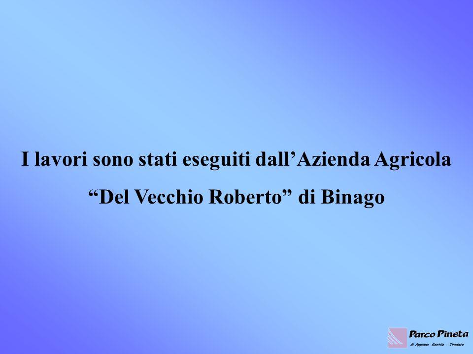I lavori sono stati eseguiti dallAzienda Agricola Del Vecchio Roberto di Binago