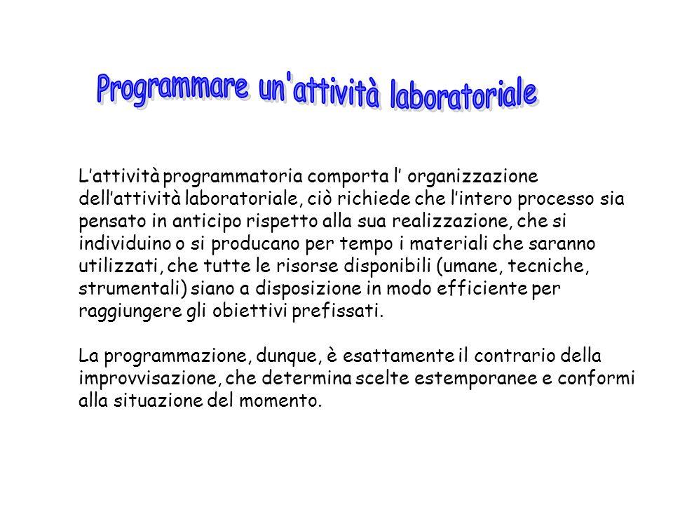 Lattività programmatoria comporta l organizzazione dellattività laboratoriale, ciò richiede che lintero processo sia pensato in anticipo rispetto alla
